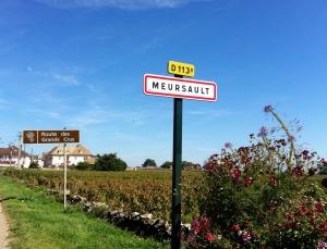 Meursault-route-des-vins